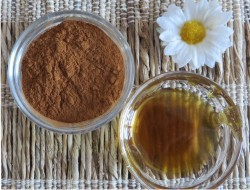 honey cinnamon benefits for children