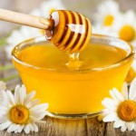 honey fights febrile neutropenia