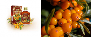 sea buckthorn and honey to boost your immunity
