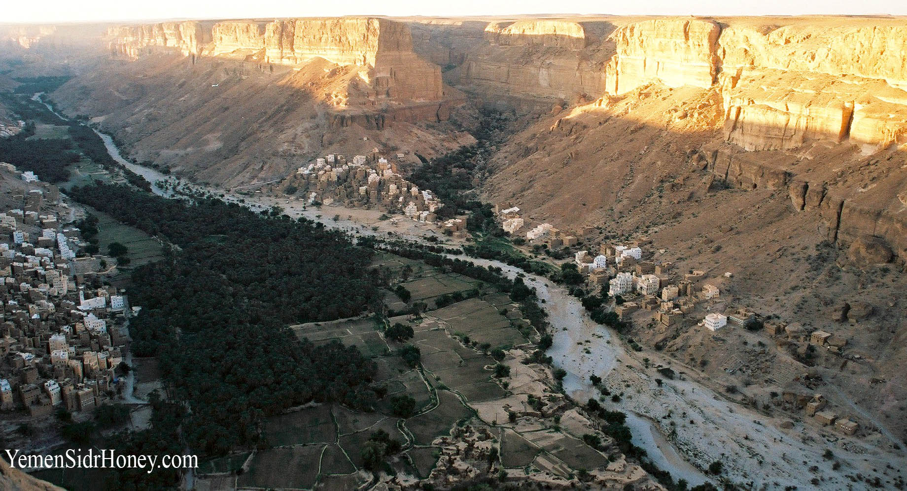 Do'an Valley full of sidr trees