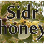 sidr honey is recommended by the Prophet