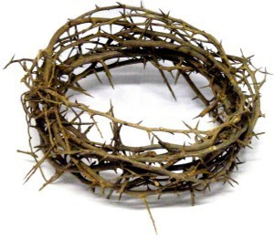 Jesus' thorn crown was made of sidr branches