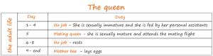 jobs of the queen