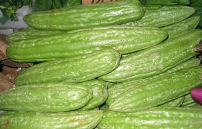 fruit of bitter melon