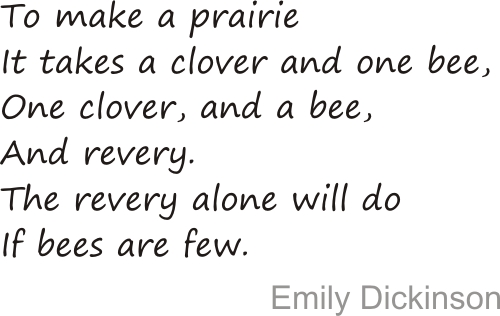 a prairie and a bee