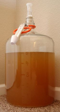 professional carboy 250