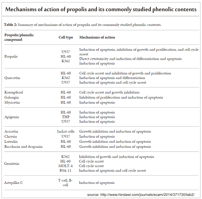how do phenolic contents action