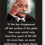 what Einstein said about the disappearance of bees