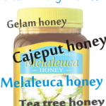 melaleuca honey aha cajeput honey aka gelam honey