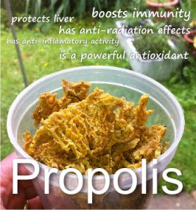 health benefits of propolis