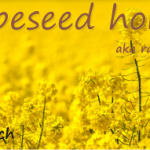 rapeseed honey aka rape honey is the best honey for your stomach