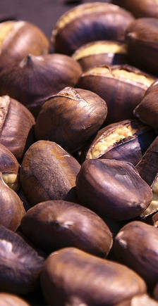 yummy roasted chestnuts