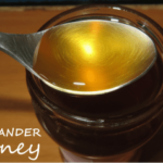 coriander honey health benefits