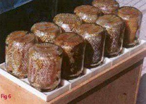 the jars of honey