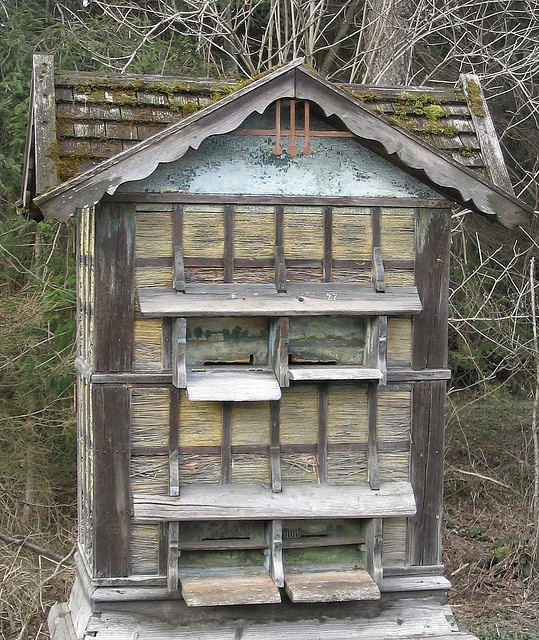 old looking hive