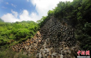 hives in China