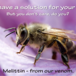 melittin, a toxin from bee venom can kill hiv