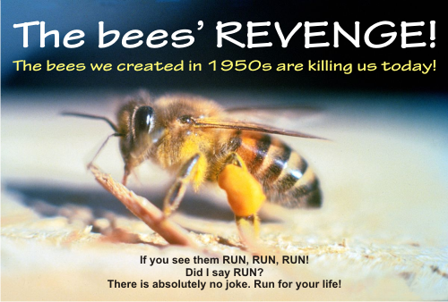 just run if you see a swarm of Africanized bees