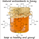 antioxidants present in honey