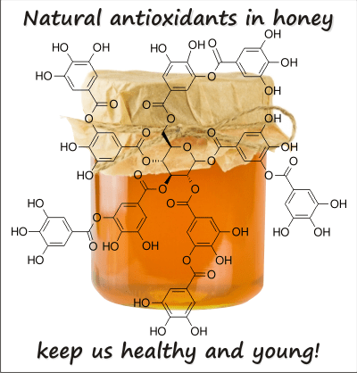 does honey have antioxidants