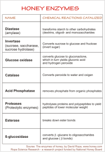 what are the enzymes of honey
