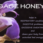 what is sage honey good for
