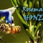 rosemary honey health benefits