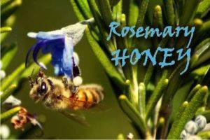 rosemary honey health benefits