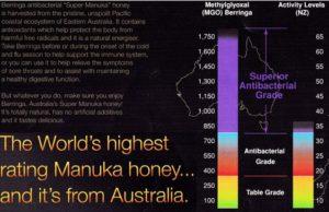 comparison between manuka honey and berringa honey