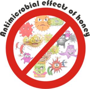 honey has powerful antimicrobial powers