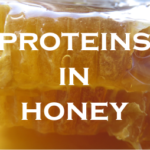 what are the proteins in honey