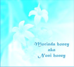 what is noni honey or morinda honey