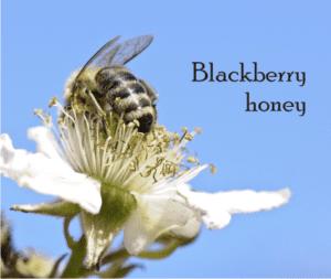 blackberry honey and bramble honey