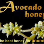 avocado honey health benefits