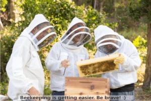 start beekeeping today It is easy