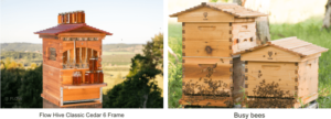 the benefits of having a flow hive