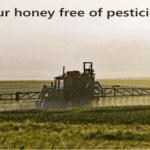 pesticides in honey