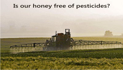 pesticides in honey