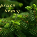 what is spruce honey