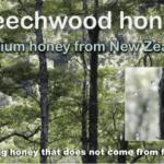 what is beechwood honey