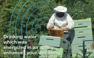 why beekeepers are healthy
