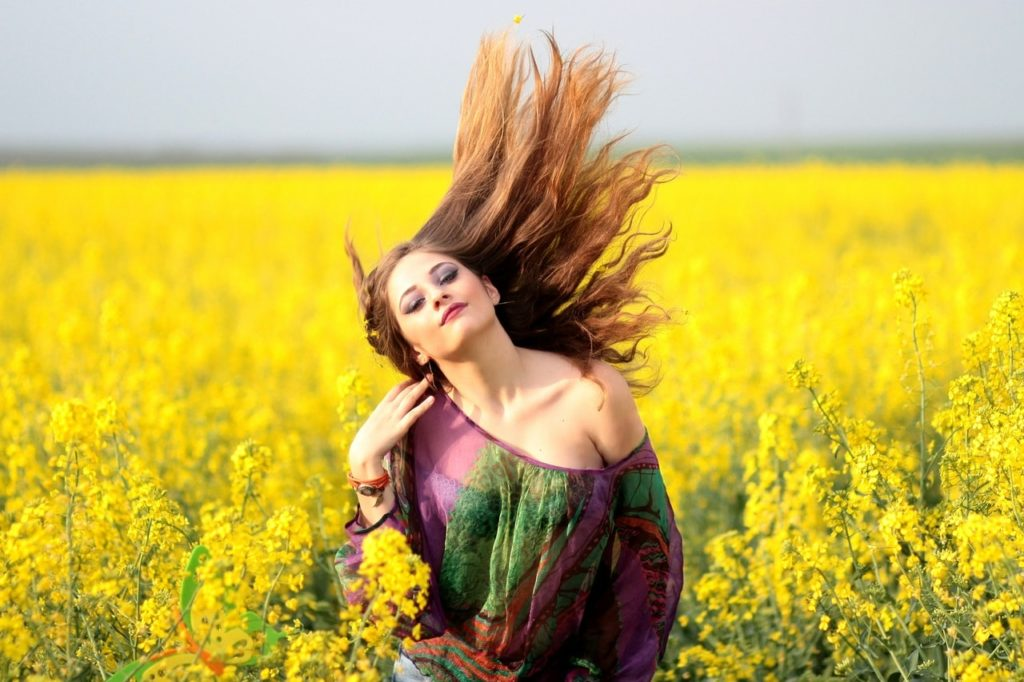 taking a photo in canola field