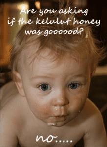 health benefits of stingless honey