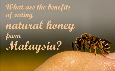 the benefits of eating natural honey from malaysia