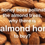 what is almond honey