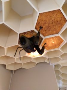 bee getting out of the ceiling