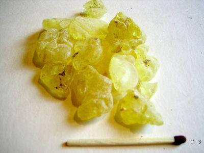 mastic gum kills h pylori