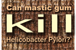 natural treatment for h pylori