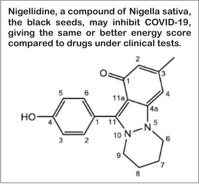 nigella sativa help prevent covid-19