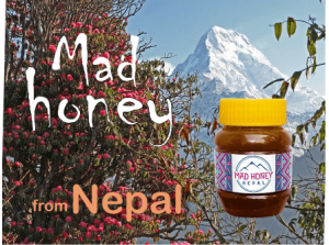 what is mad honey and how dangerous it is